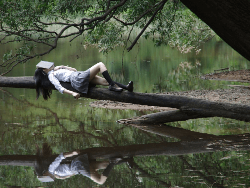 A young girl asleep on a tree branch, with a book on her face