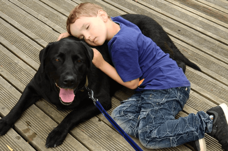 A child resting on a large black dog